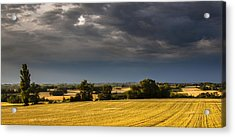 Storm Brewing Over Corn Acrylic Print by Matthew Bruce