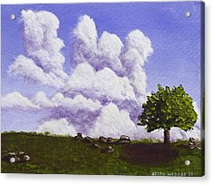 Storm Clouds Over Maine Blueberry Field Acrylic Print by Keith Webber Jr