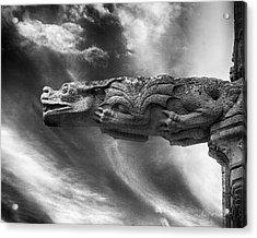 Storm Dragon Acrylic Print by Diana Haronis