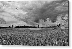Storm Field - Canada Acrylic Print