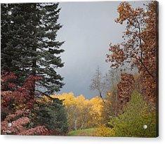 Storm In Hidden Gardens Acrylic Print