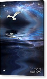 Storm Acrylic Print by John Edwards