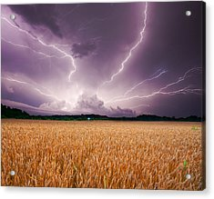 Storm Over Wheat Acrylic Print by Alexey Stiop