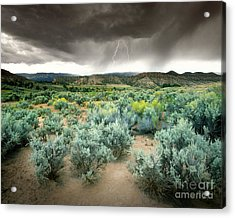 Storms Never Last Acrylic Print by Edmund Nagele