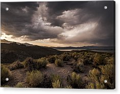 Stormy Day At Mono Lake Acrylic Print by Cat Connor