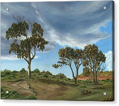 Stormy Eucalyptus Acrylic Print