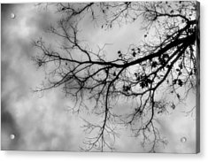 Stormy Morning In Black And White Acrylic Print