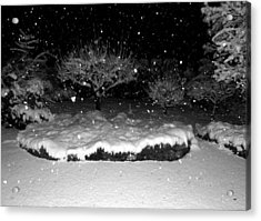 Stormy Night Acrylic Print by Will Borden