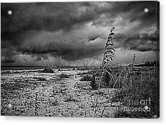 Stormy Seas Acrylic Print by Anne Rodkin