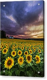 Stormy Sunrise Acrylic Print by Debra and Dave Vanderlaan