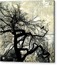 Stormy Weather  Acrylic Print by Ann Powell