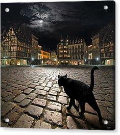 Strasbourg's Night Acrylic Print by Igor Zenin