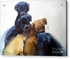 Stray Puppies Acrylic Print