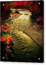 Acrylic Print featuring the photograph Stream by Bill Howard