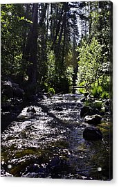 Acrylic Print featuring the photograph Stream by Brian Williamson