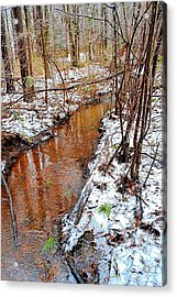 Stream In The Winter Forest Acrylic Print