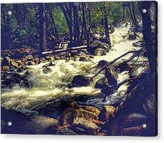 Stream Of Consciousness- Yosemite Acrylic Print by Laura Mazzuca