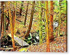 Stream On Appalachian Trail Acrylic Print