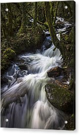 Acrylic Print featuring the photograph Stream On Eume River Galicia Spain by Pablo Avanzini