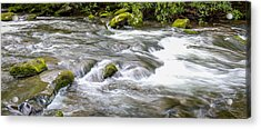 Acrylic Print featuring the photograph Stream  by Trace Kittrell