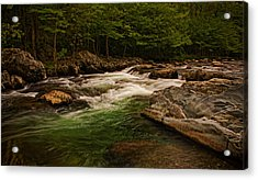 Stream Within The Trees Acrylic Print