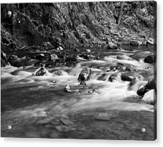 Acrylic Print featuring the photograph Streambed by David Lester