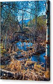 Streaming Beauty Acrylic Print by Omaste Witkowski