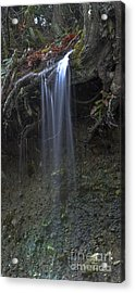 Streaming Mist Acrylic Print