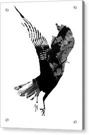 Street Crow Acrylic Print by Jerry Cordeiro