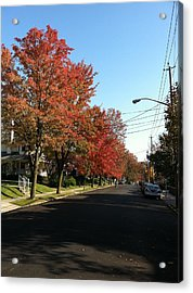 Street View Staten Island Acrylic Print by Kenneth Cole