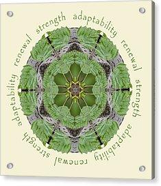 Strength Mandala 1 Acrylic Print