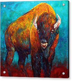 Strength Of The Bison Acrylic Print