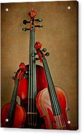Stringed Trio Acrylic Print by David and Carol Kelly
