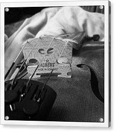 Strings Acrylic Print