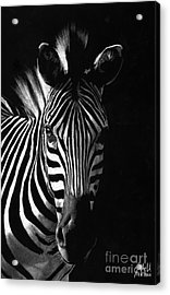 Striped Beauty Acrylic Print by Sheryl Unwin