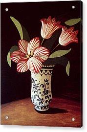 Striped Tulip  Acrylic Print by Dory Coffee