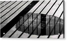 Stripes And Reflections 1 Acrylic Print by Arkady Kunysz