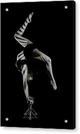 Stripes Acrylic Print by Howard Ashton-jones