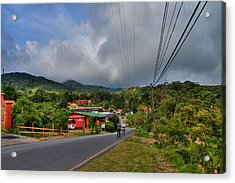 Strolling Around Monteverde In Costa Rica Acrylic Print by Andres Leon