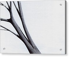 Acrylic Print featuring the drawing Strong Branches Between Light by Giuseppe Epifani