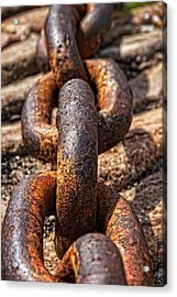 Strong Links Acrylic Print by Dave Files