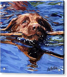 Strong Swimmer Acrylic Print by Molly Poole