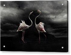 Strong Temperament Acrylic Print by Martine Benezech