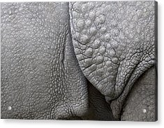 Structure Of The Skin Of An Indian Rhinoceros In A Zoo In The Netherlands Acrylic Print by Ronald Jansen