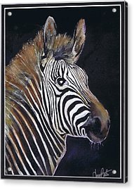 Strutting His Stipes Acrylic Print