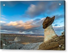 Stud Horse Point Acrylic Print