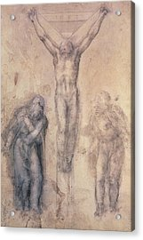 Study For A Crucifixion Acrylic Print by Michelangelo Buonarroti