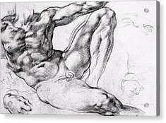 Study For The Creation Of Adam Acrylic Print by Michelangelo