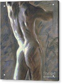 Study Of The Male Torso I Acrylic Print