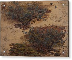 Study Of Trees Acrylic Print by Henri Duhem